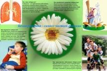 Плакат Белая ромашка